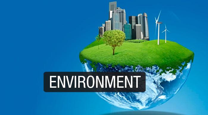 Vocabulário do meio ambiente